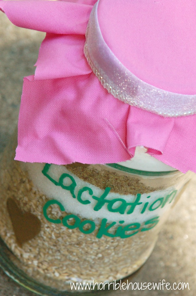Baby Shower Gift: Lactation Cookies in a Jar